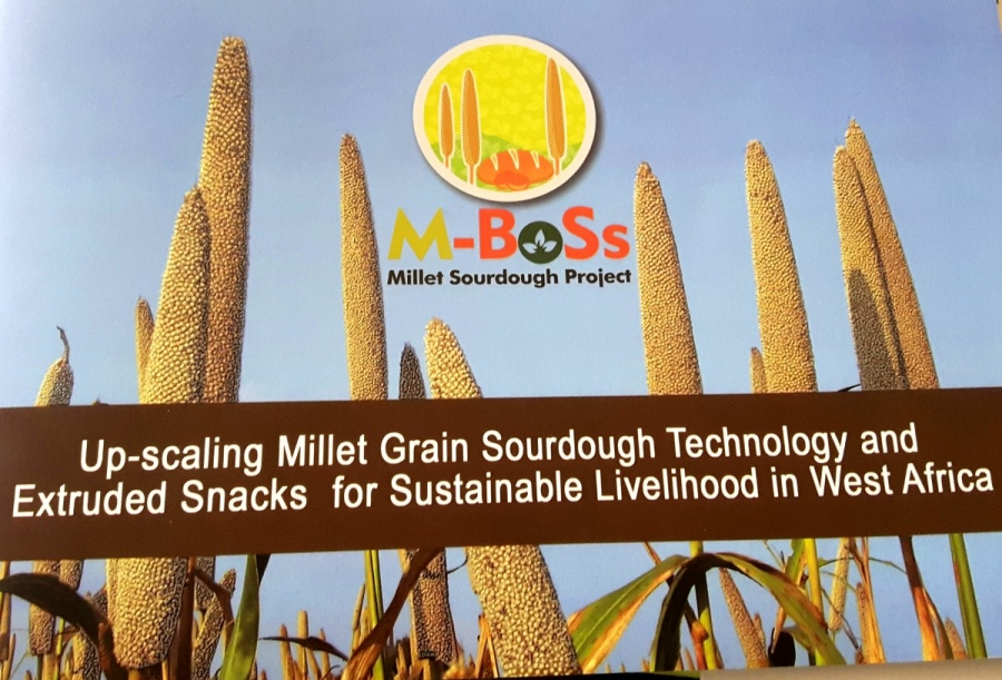 Up-scaling Millet Grain Sourdough Technology and Snacks for Sustainable Livelihood in West Africa.